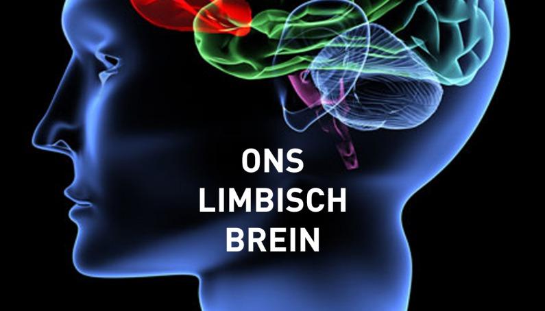 Foto van Hoe het limbisch systeem in je hersenen jouw gedrag beïnvloed