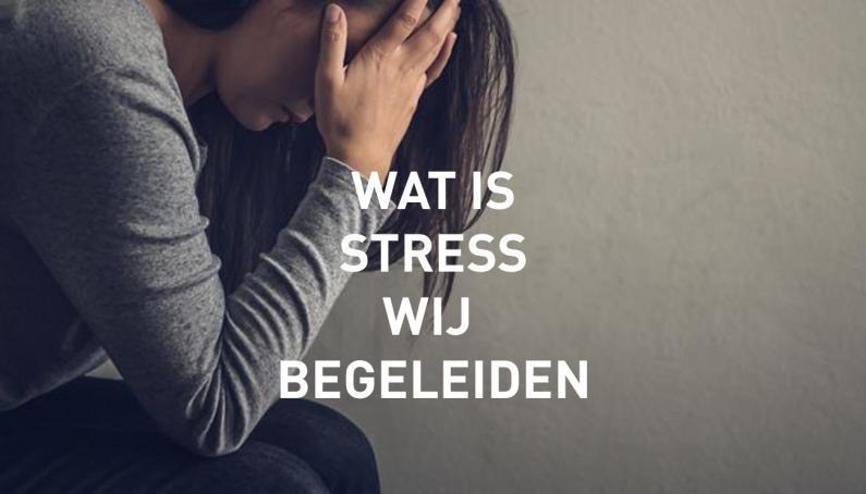 Foto van Wat is stress en hoe wij daarbij begeleiden