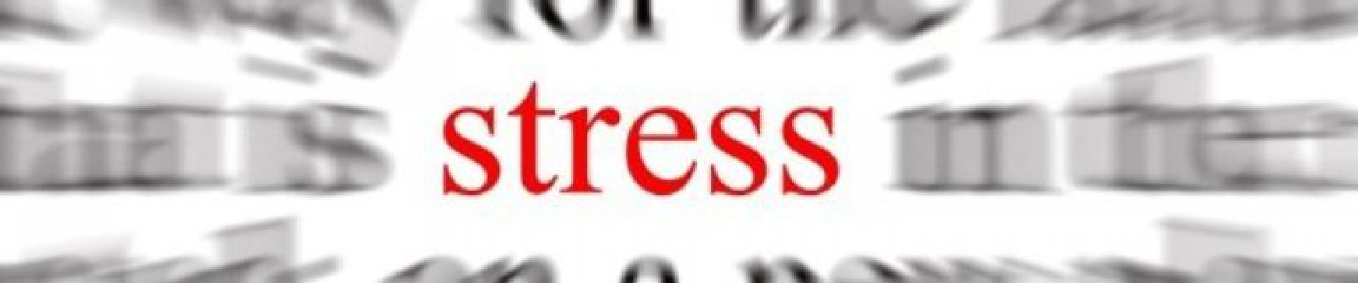 Headerfoto van Wat is stress en hoe wij daarbij begeleiden