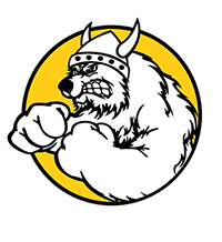 Logo van the iceviking